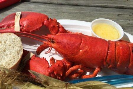Lobsterman