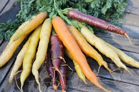 Roasted Rainbow Carrots Recipe