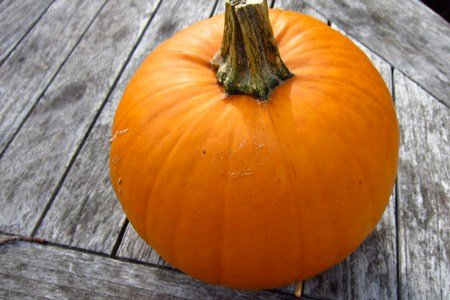 Top 11 Pumpkin Recipes