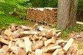 woodpileb