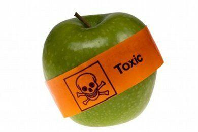 Organic versus Conventional Produce